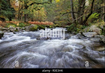Einen Stream im englischen Lake District im Herbst - Stockfoto