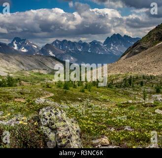 Blick auf das Tal des Banff National Park Mount Assiniboine, Provincial Park - Stockfoto