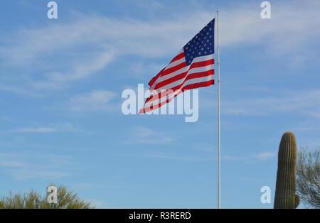 United States Flag neben einem Saguaro Kaktus, Cave Creek, Maricopa County, Arizona, USA - Stockfoto