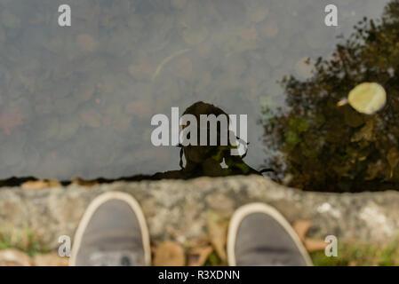 Fotograf spiegelt sich auf der Oberfläche eines flachen Wasser während die Natur am Rande eines Sees im Herbst fotografieren. - Stockfoto