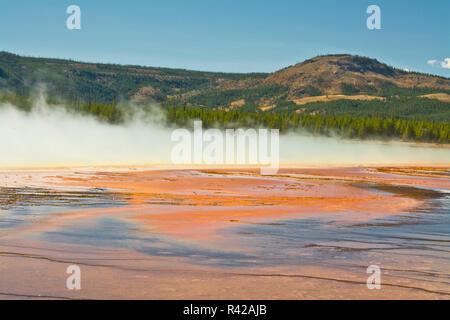 Grand Prismatic Spring, Midway Geyser Basin, Yellowstone National Park, Wyoming, USA - Stockfoto