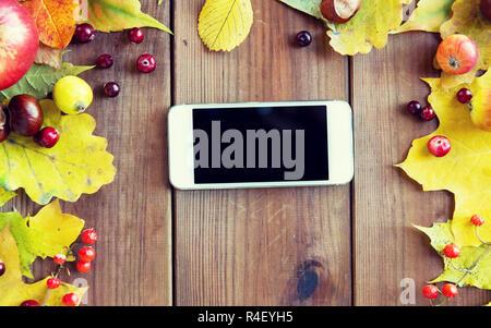Smartphone mit Herbst Blätter, Früchte und Beeren - Stockfoto