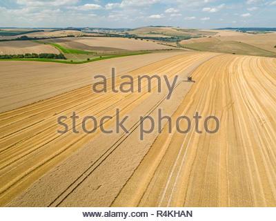 Ernte Antenne Landschaft des Mähdreschers schneiden Sommer Weizenfeld Ernte auf der Farm - Stockfoto
