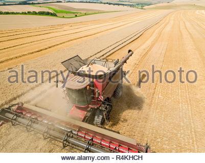Ernte Antenne Landschaft des Mähdreschers schneiden Sommer Weizenfeld Ernte mit Traktoren Anhänger und blauer Himmel auf der Farm - Stockfoto