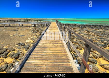 Sicht der holzsteg am Hamelin Pool Stromatolithen, einem geschützten Marine Nature Reserve in Shark Bay, Western Australia. Sonnigen Tag mit blauen Himmel. Kopieren Sie Platz. - Stockfoto