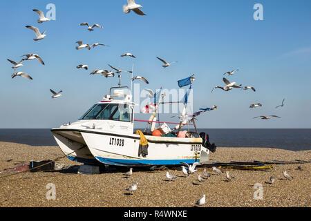 Aldeburgh, Suffolk, Großbritannien. Ein Fischerboot schleppte Auf dem Kiesstrand, von hungrigen Möwen - Stockfoto