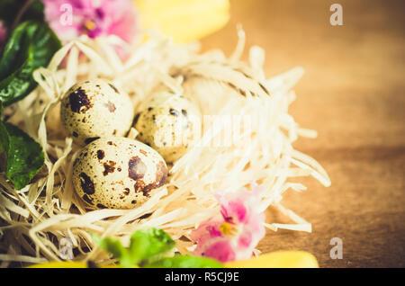 Ostern Zusammensetzung von Ostern Wachtel Eier im Nest mit Frühling Blumen und Blätter auf die hölzerne Hintergrund. Soft Focus. - Stockfoto