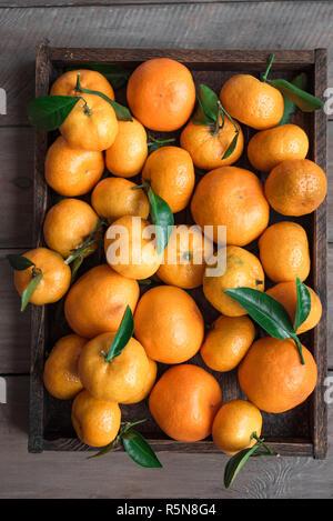 Tangerinen (Orangen, Clementinen, Zitrusfrüchte) mit grünen Blättern in Feld auf hölzernen Hintergrund, Ansicht von oben.