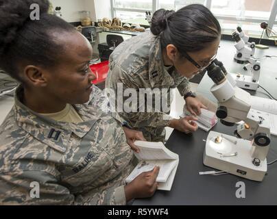 Us Air Force Kapitäne Michele Balihe (links) und Caroline Brooks (rechts), USAF Schule für Luft- und Raumfahrtmedizin der öffentlichen Gesundheit Abteilung Bildung Studenten, beobachten Sie durch ein Mikroskop eine medizinisch bedeutende Fliegen der Familie Diptera in der entomologie Lab am 88. Luft- und Raumfahrtmedizin Squadron, Wright-Patterson Air Force Base, Ohio, 21. April 2017. Die 88 AMDS lernen die Teilnehmer, wie medizinisch relevante Insekten in ihre Umgebung zu identifizieren, für die ordnungsgemäße Risikominderung Flieger sicher zu halten. - Stockfoto