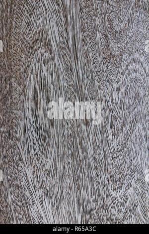 Holzmaserung Textur - Stockfoto