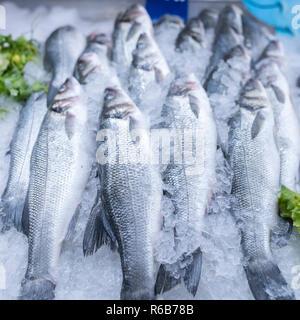 Frischer Seebarsch und Brassen auf Eis auf Supermarkt Seafood Anzeige - Stockfoto