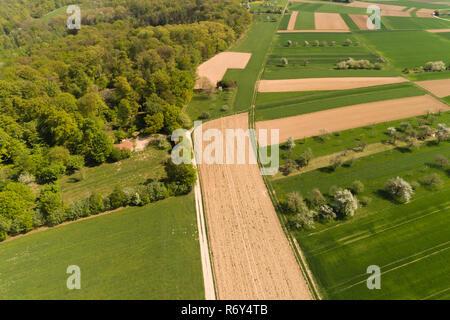 Luftaufnahme über den Wald auf der filderebene - Stockfoto