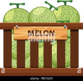 Eine Kiste von Melone Abbildung - Stockfoto