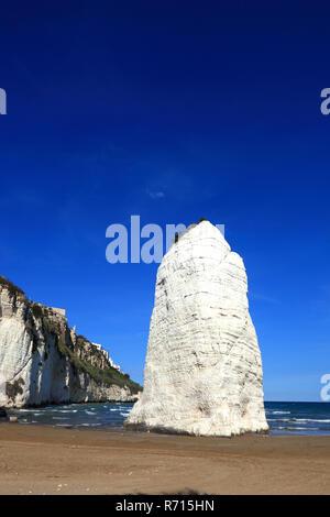 Pizzomunno, Kalkstein Felsen und Klippen am Strand, Vieste, Gargano, Apulien, Italien - Stockfoto