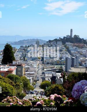 Blick von der Lombard Street in San Francisco zu Telegraph Hill und die Oakland Bay Bridge, urban, blauer Himmel, Sonnig - Stockfoto