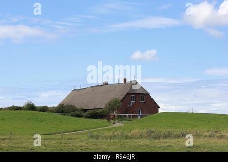 Pfad zu einem Reetdachhaus auf der kleinen Insel Hallig Groede in Deutschland - Stockfoto