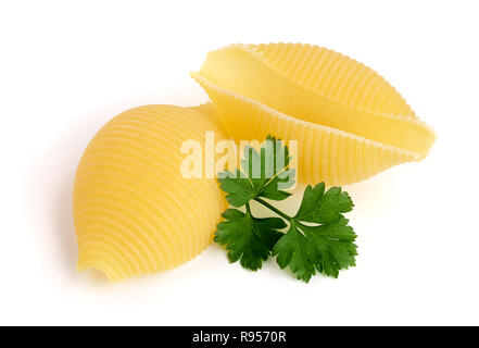 Italienische lumaconi mit Petersilie auf weißem Hintergrund. Snailshell Lumache, geformte Teigwaren - Stockfoto