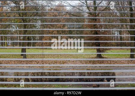 Blick durch Fenster Jalousien, Green Park im Winter - Stockfoto