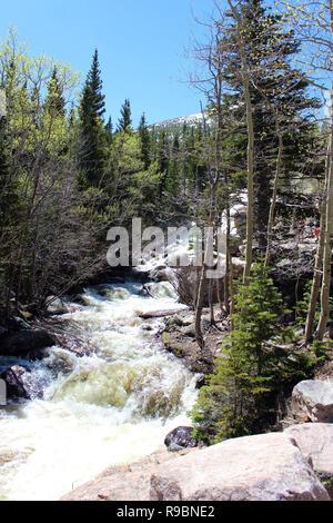 Die rauschenden Wasser von Alberta fällt auf die Gletscherschlucht Trail im Rocky Mountain National Park, Colorado, USA - Stockfoto