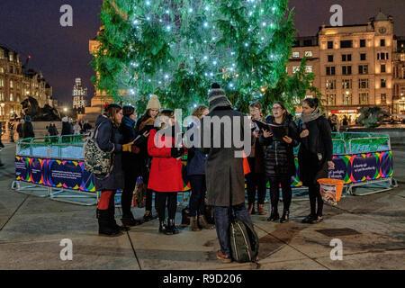 Chöre Singen Weihnachtslieder.Chor Singt Weihnachtslieder Bei Der Weihnachtsbaum Beleuchtung