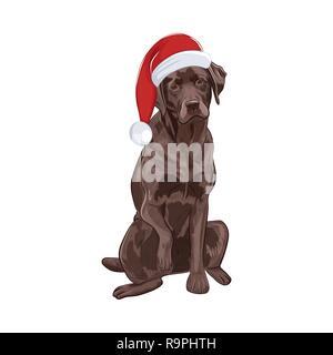 Chocolate Labrador in Santa Hut sitzen und eine Pfote. Brauner Hund auf weißem Hintergrund. Adorable Santa Hund für Ihr Design. - Stockfoto