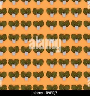 Von tropischen Palmen monstera Blätter liegt in einer pastellfarbenen Eimer auf einem farbigen Hintergrund. Flach trendy minimal Muster. Ansicht von oben. - Stockfoto