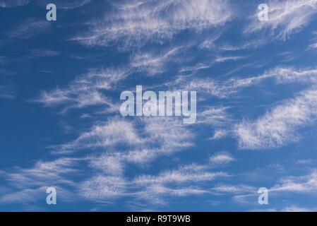 Die weißen Wolken des filamentösen Aspekt, vor einem strahlend blauen Himmel - Stockfoto