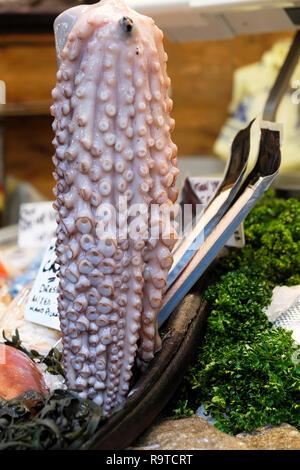 Borough Market Fische stall Display mit frischem Tintenfisch Tintenfisch Meeresfrüchte vertikale Ansicht und Petersilie zum Verkauf im November London England UK KATHY DEWITT - Stockfoto