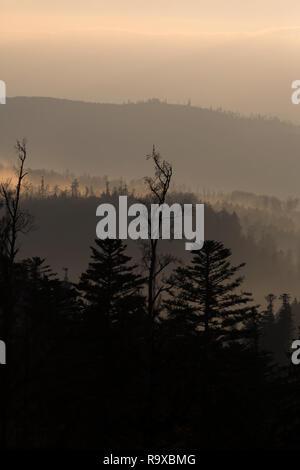 28.10.2014, Grandfontaine, Grand Est, Frankreich - Blick vom Col du Donon im Elsass in die Nordvogesen in der Abenddaemmerung. Der Donon-Gebirgsstock
