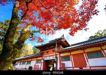 Tamukeyama Hachimangu Schrein in Nara, Japan.