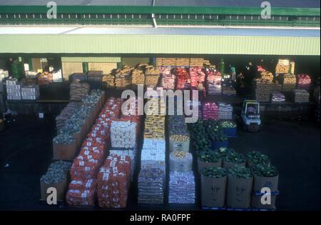 Boxen von Gemüse auf dem FLEMINGTON MÄRKTE (Sydney), Sydney, New South Wales, Australien. - Stockfoto