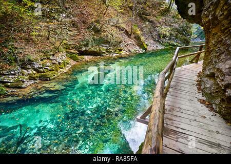 Schlucht Vintgar, Triglav Nationalpark, die Julischen Alpen, Slowenien - Stockfoto
