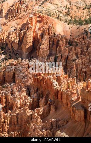 Bryce Canyon National Park, Utah, USA. Das Bryce Amphitheater, die den Canyon Wände, Flossen, Windows und Hoodoo Felsformationen - Stockfoto