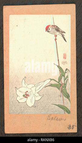 Juri Ni Shokin, kleinen Vogel auf Lilie Pflanze. [Zwischen 1890 und 1920], 1 Drucken: Holzschnitt, Farbe, 13,8 X 8,5, Drucken zeigt eine Neuerfundene - Stockfoto