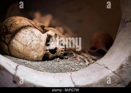 Menschlichen Tod Skelett Knochen und Schädel Foto - Stockfoto