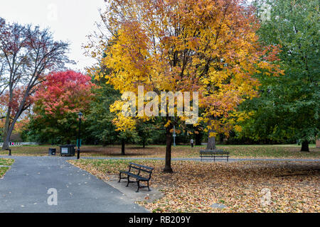 Rückgang der Prospect Park, Brooklyn mit bunten Bäumen - Stockfoto