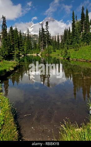 WASHINGTON - Mount Rainier, spiegelt sich in den flachen Gewässern von Mirror Lake in der Nähe von Indischen Henry's Jagdrevier im Mount Rainier National Park entfernt. - Stockfoto