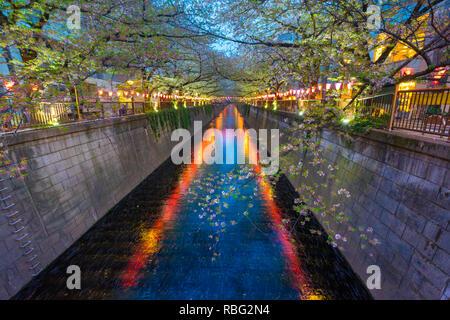 Meguro River ist bekannt Cherry Blossom Flecken. Leute zum meguro Fluss kommen die herrliche Kirschblüte zu sehen. - Stockfoto