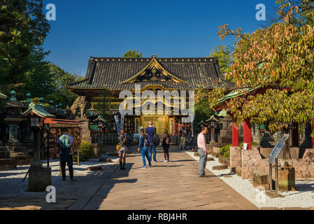 Touristen besuchen die alte Tosho-gu Shinto Schrein im Ueno Park in Tokio, ein großartiges Beispiel der religiösen Architektur in der Edo Periode - Stockfoto