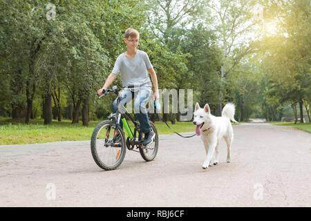 mann und husky hund spaziergang im park stockfoto bild. Black Bedroom Furniture Sets. Home Design Ideas