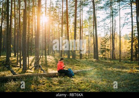 Aktive junge Erwachsene schön Kaukasische Mädchen Frau Gekleidet in rote Jacke ruhend Sitzen auf umgefallene Baum und Sie ihr Smartphone im Herbst Sonnenuntergang Grün für