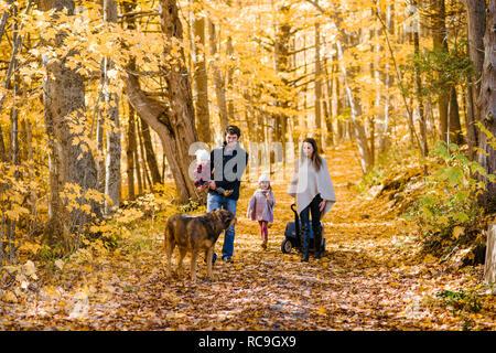 4-köpfige Familie und Hund im Wald - Stockfoto