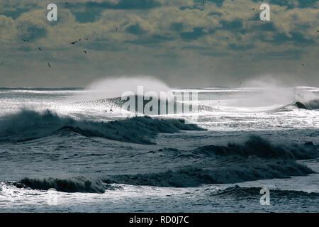 Silhouette von Surfers Paddeln über brechenden Wellen, Jersey Shore, New Jersey, United States - Stockfoto