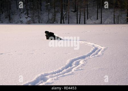 Ein einsamer Mann, Spaziergänge im Schnee. Dramatische Silhouette eines Mannes zu Fuß in einer verschneiten Lichtung im Wald. Kalt. - Stockfoto