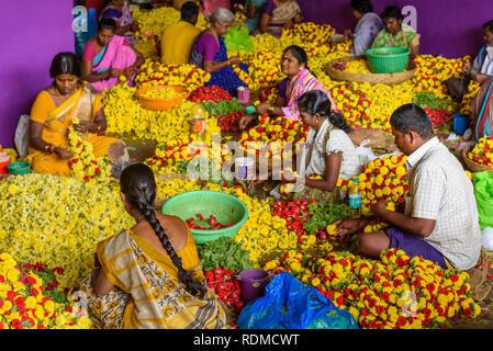 Frauen suchen männer craigslist bangalore