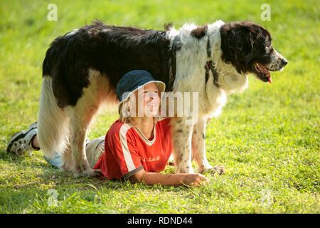Junge liegen unter einem großen Hund auf einer Wiese - Stockfoto