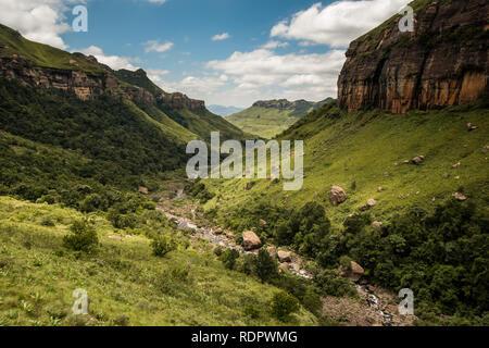 Die River Gorge, Klippen und Berge auf der Thukela Wanderung an den unteren Rand des Amphitheaters Tugela Wasserfall in den Royal Natal National Park, Drak - Stockfoto