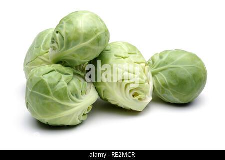 Rosenkohl, frischen Grünkohl auf weißem Hintergrund - Stockfoto