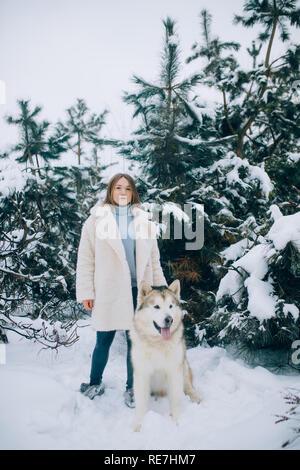 Mädchen steht neben einem Hund Alaskan Malamute für einen Spaziergang im Winter Wald gegen Kiefern Hintergrund. - Stockfoto