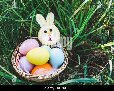 Korb mit bunten Ostereier und ein Kaninchen-förmigen Lollipop stehend auf dem grünen Rasen gegen die hellen Strahlen der Frühlingssonne. Frohe Ostern. Pre - Stockfoto
